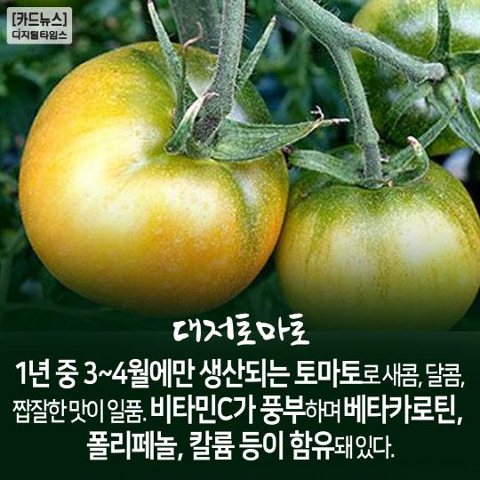 [카드뉴스] 봄철 입맛 돋우는 제철 먹거리